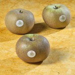 manzana-gusanillo