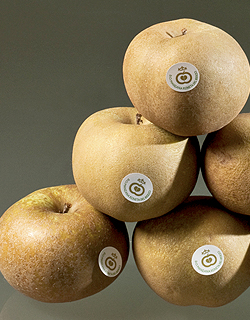 cata-manzana