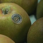 manzana-conservacion