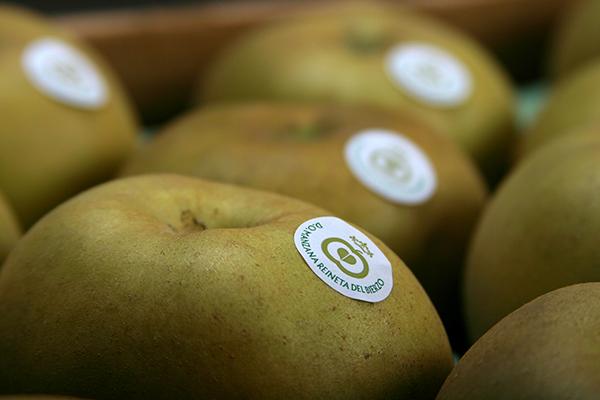 manzana-quercetina